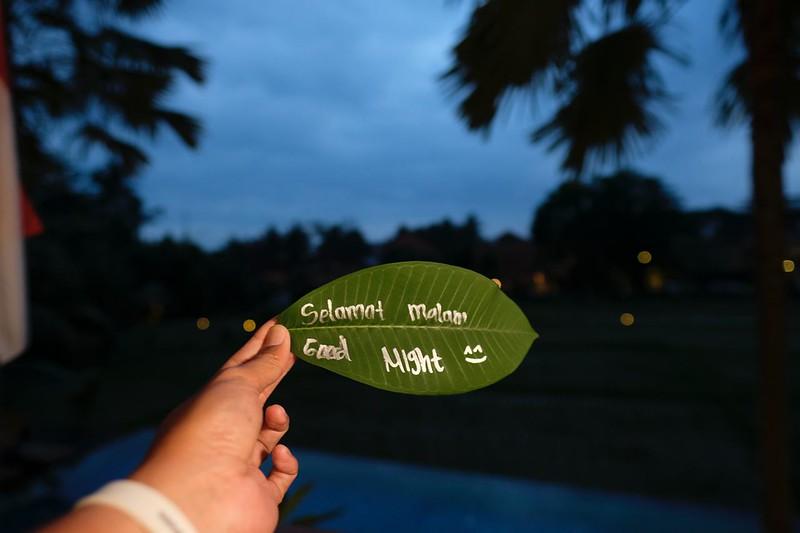 Trip of Wonders Day 10 @Bali 0155.JPG