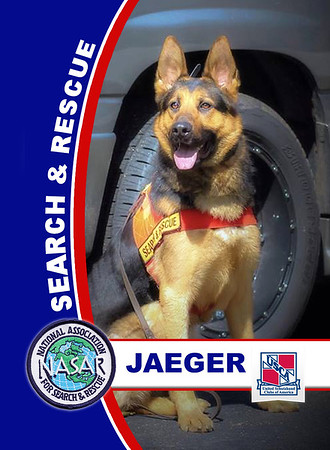"NASAR Search & Rescue K9 ""Cop Cards"""