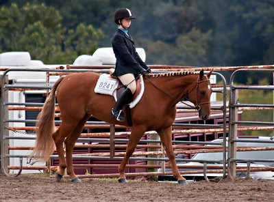 4H Districts 09/17/11 Hunter Hack Horses