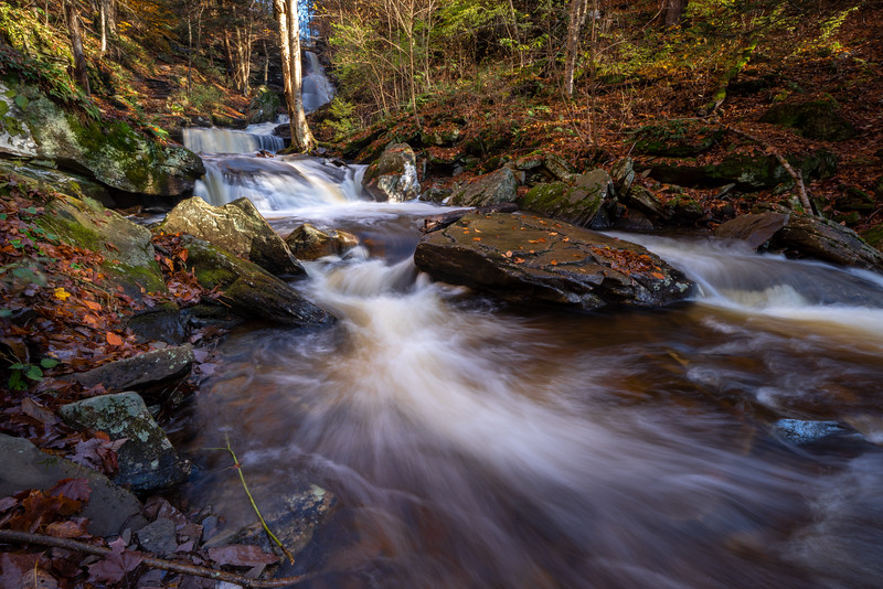 Ricketts Glen-5065.jpg