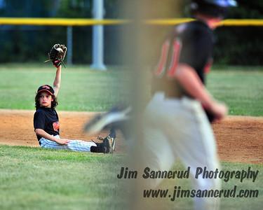 Summer 2009 District 20 Travel Baseball