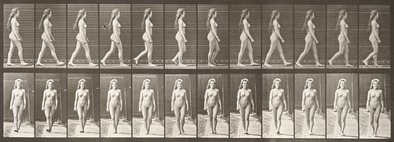 Nude woman walking (Animal Locomotion, 1887, plate 17)