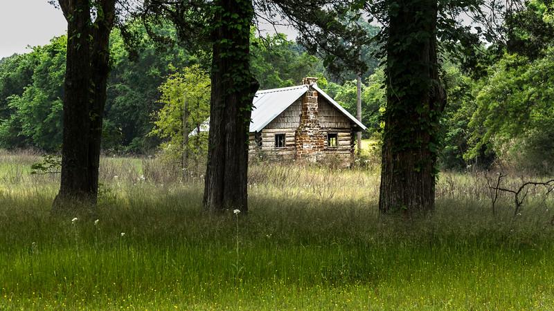 Houston County backcountry 3633.jpg