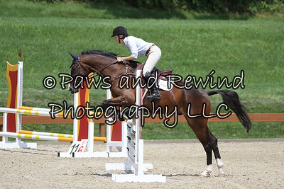 Grand Prix Ring: Level 1 Schooling Jumpers