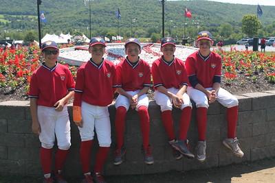 Bees Baseball 12U - 2015