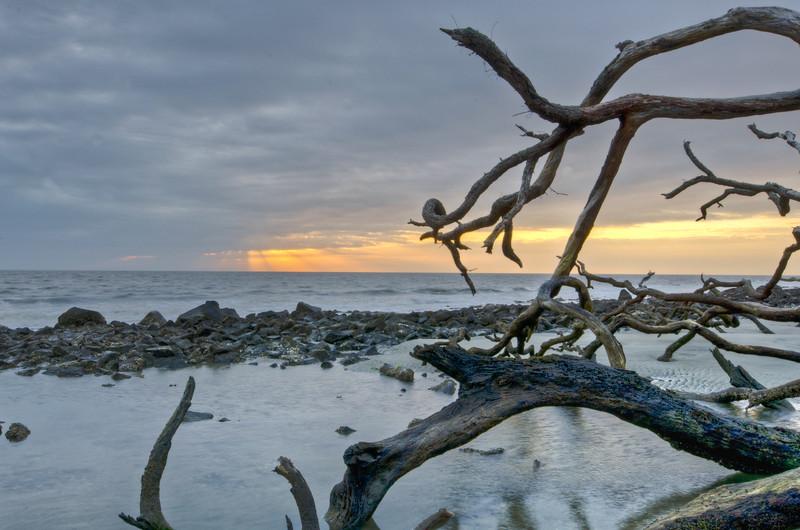 Cumberland Island-13.jpg