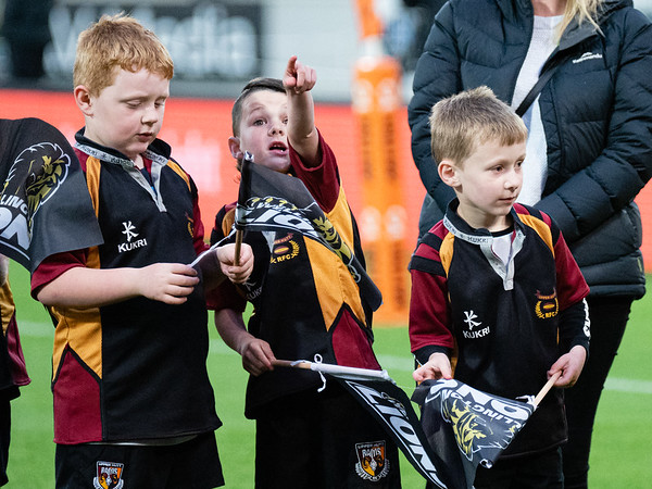Wellington v Waikato - 12 October 2019