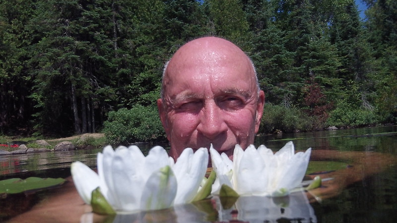 20130815__0042100_3217_hungry_jack_lake_david_white_water_lily_cook_county_mn.JPG