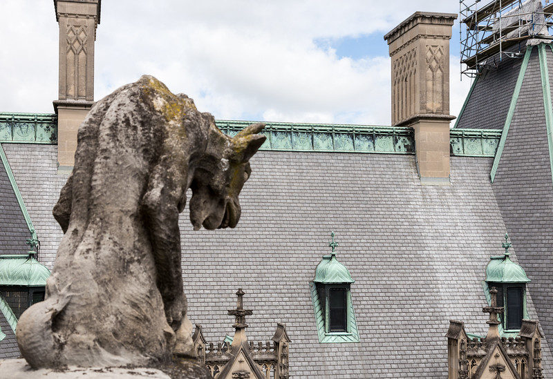 gargoyle looking down over rooftop