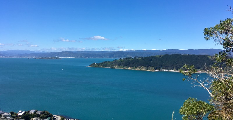 Miramar, Eastbourne, and Somes Island - all in one shot