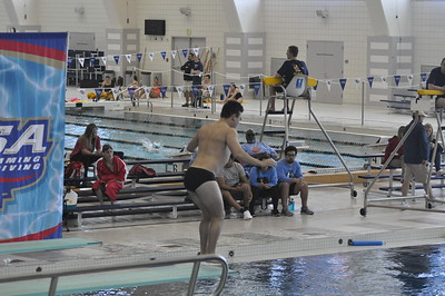 State Dive Boys