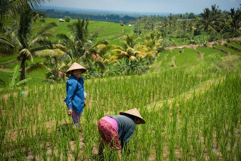160218 - Bali - 2938.jpg