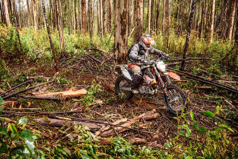 2019 KTM Australia Adventure Rallye (201).jpg