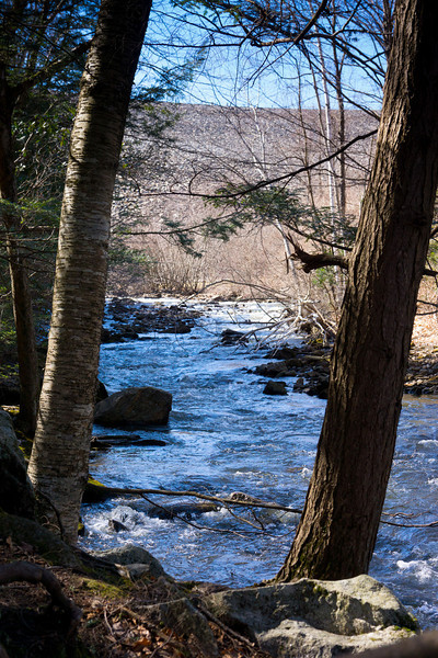 Branch Brook, Early Black Rock State Park, Watertown, CT