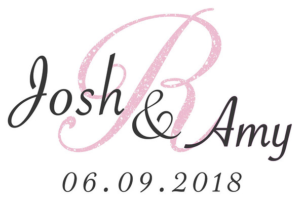 Josh & Amy Wedding