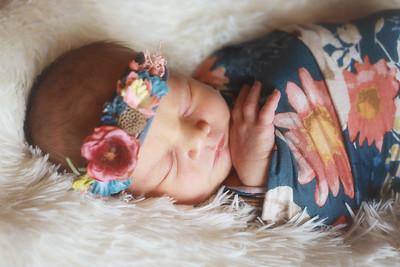 Baby Evelyn B. {newborn}