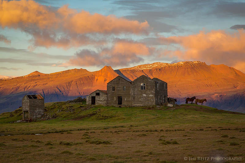 Icelandic horses stand guard over abandoned farm buildings - near Höfn in eastern Iceland.