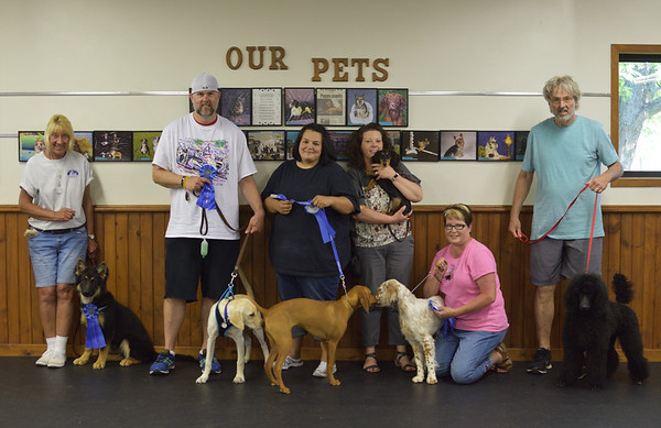 Puppy Class May/June 2018