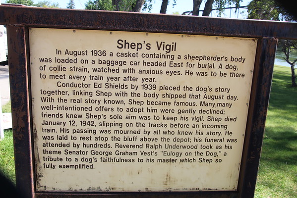 Vigil of Shep the Dog
