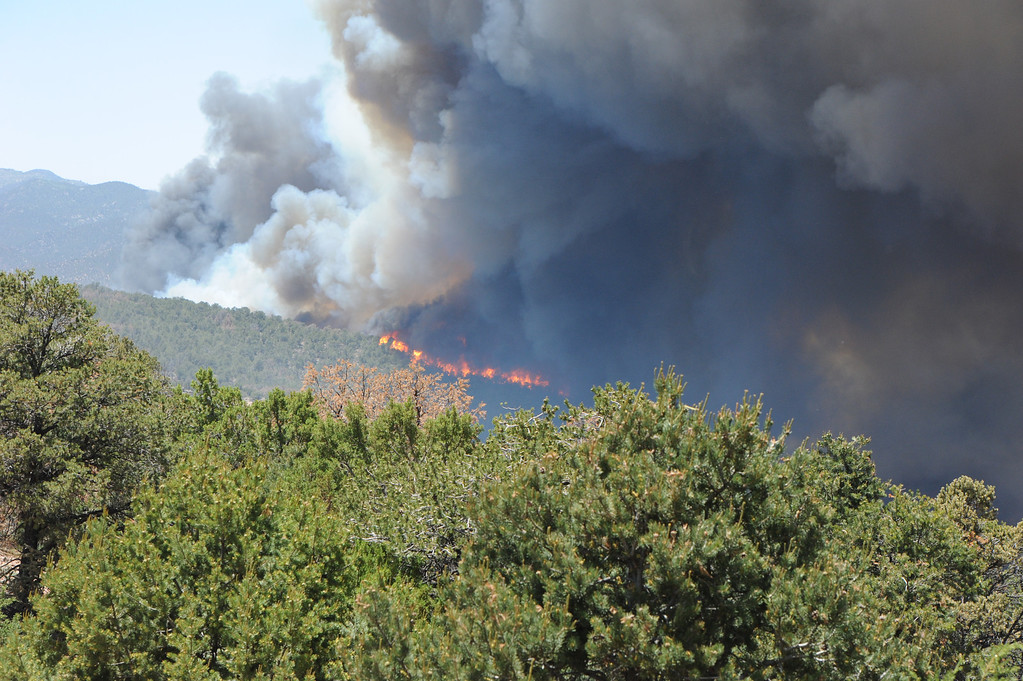 . According to the Canon City Area Fire Protection District, there is a growing wildfire south of the Royal Gorge. Evacuations have been ordered for the south side of the Royal Gorge park. Authorities are describing the blaze as a major fire that is moving fast and they ask that the public avoid the area around the Royal Gorge Bridge and Park. Estimated size of the Royal Gorge Fire is 15-20 acres. Brandon Hopper/Daily Record
