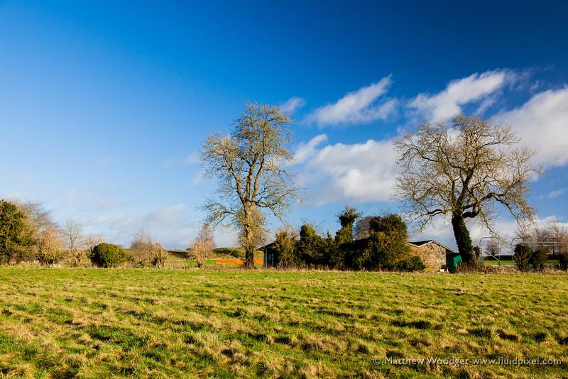 Woodget-130101-017--blue, farming, Field, green, sky, Tree.jpg