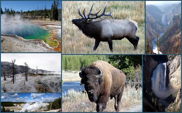 Yellowstone NP, Wyoming 2012  2019