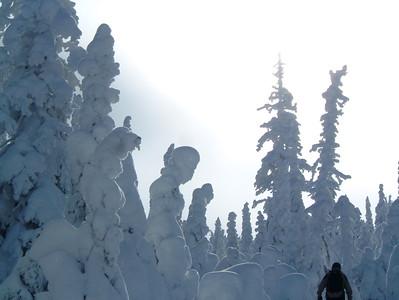 2007-02-20 Voyage Vallée des Fantômes (Michel Valin)