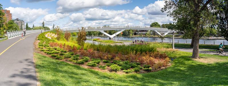 New Flora Footbridge Over Rideau Canal in the Glebe Ottawa
