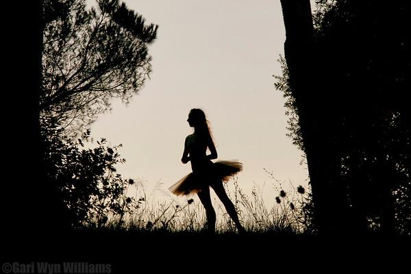 Flavia Stocchi - Classical Ballerina