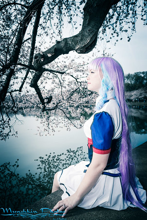 Mikumo in Cherry Blossoms