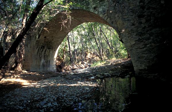 גשר ביער.jpg