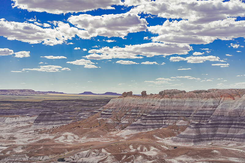 Petrified Forest and the Painted Desert