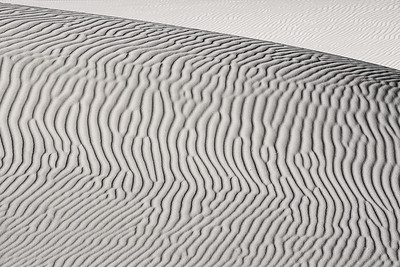 California Dunes (B&W)