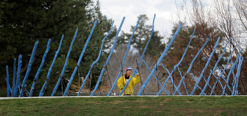 ". Using a brush and bright blue stain, volunteer Nancy Woelfel touches up ""Spiral Dance\"" by artist Nancy Lovendahl. Artists and volunteers work on a new art installation, Catalyst: Colorado Sculpture at the Denver Botanic Gardens.  (Photo By Kathryn Scott Osler/The Denver Post)"