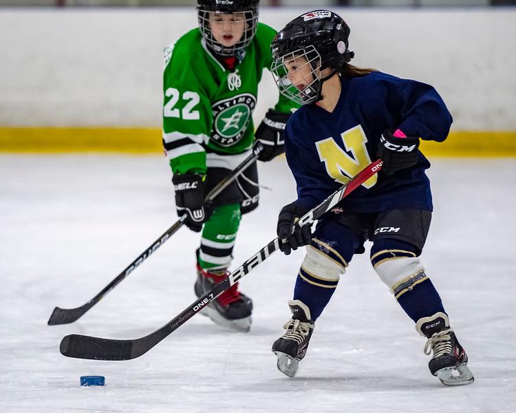 2019-02-03-Ryan-Naughton-Hockey-61.jpg
