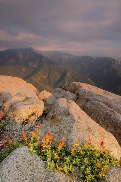 Yosemite 23.JPG