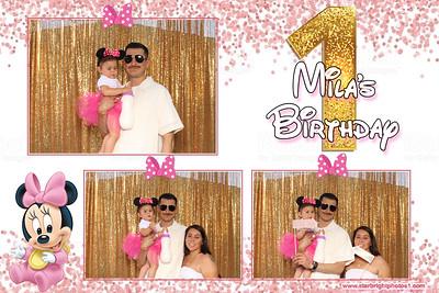 Mila's 1st Birthday