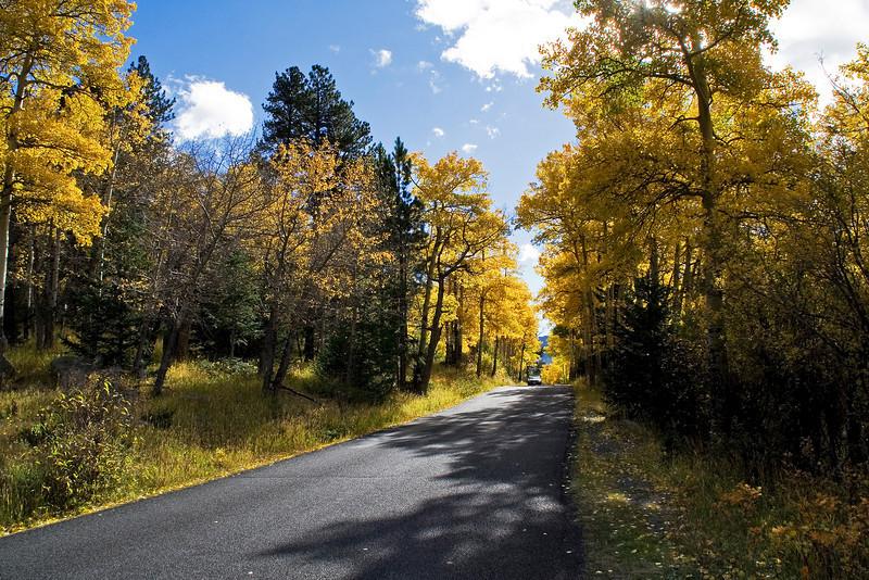 Aspen Road 2.jpg