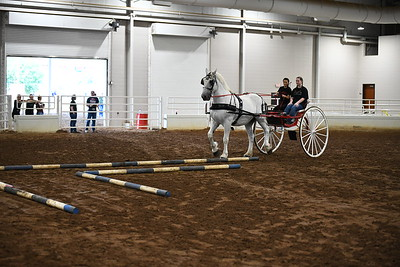 7 obstacle cart