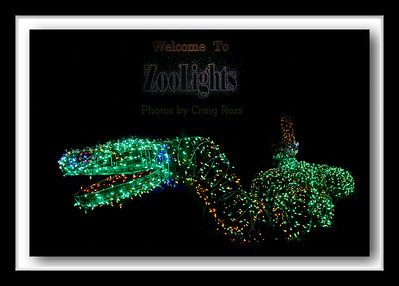 ZOOLIGHTS Phoenix Zoo Jan 217