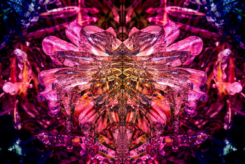 20201014-_DSC4954-Mirror-2-1.jpg