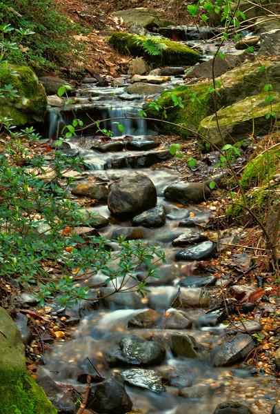 IMG_6846 GWG Waterfall.jpg