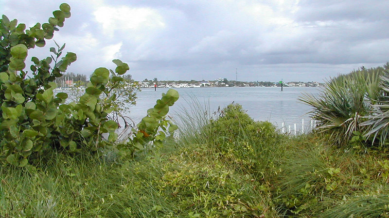 Indian River Lagoon view