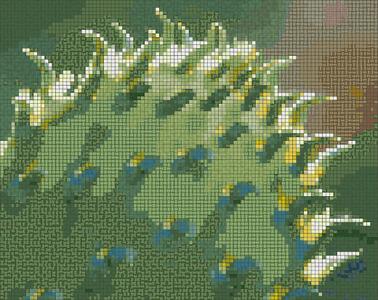 K Prickly Pear Close 4 x 3_mosaic.png