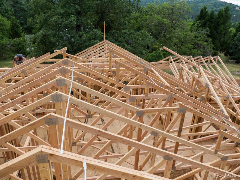 roof trusses (11 of 18).jpg