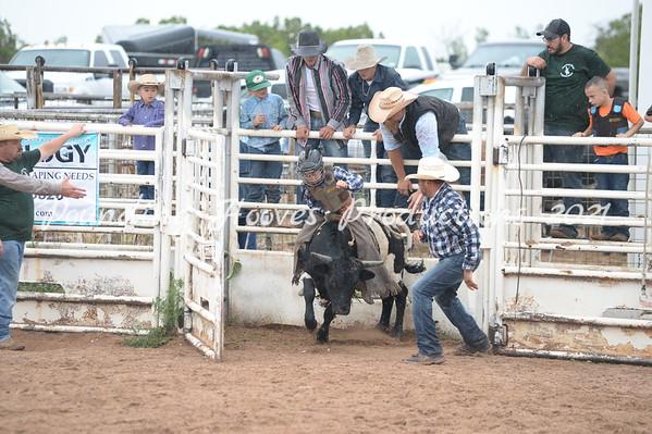 Bill Pohl Memorial Bull Riding