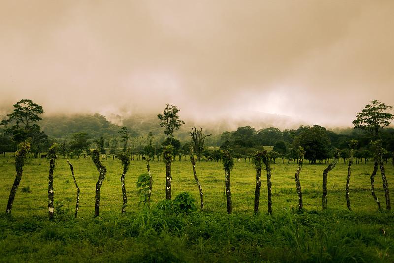 7262_Costa_Rica_v2.jpg