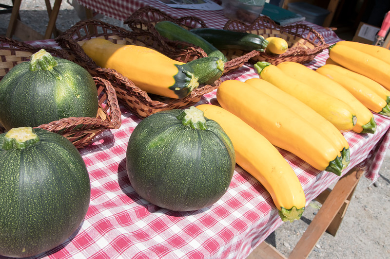 05-Zucchinis_of_various_shapes_and_colors_were_brought_in_by_Fox_Crossing_Farm.jpg