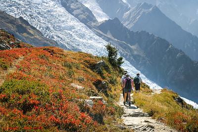 Chamonix Landscapes