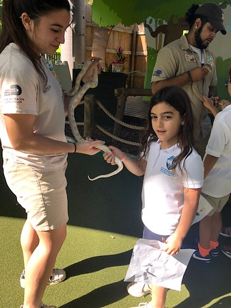Grades 1-2 Field Trip to Frost Museum and Zoo